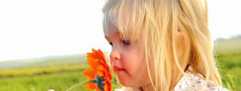 los niños deben empezar a aprender en la naturaleza