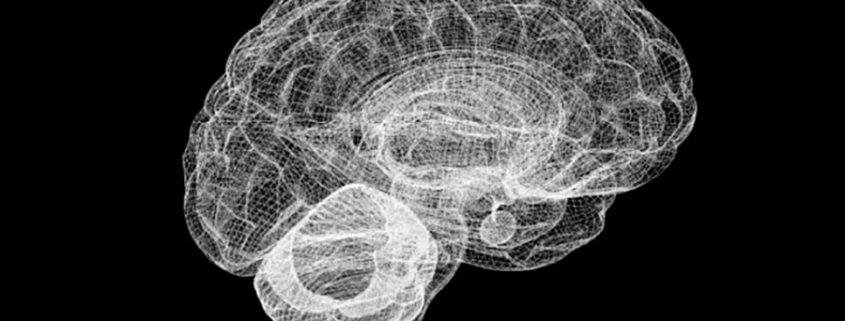estado de trance prepara cerebro para conocimiento